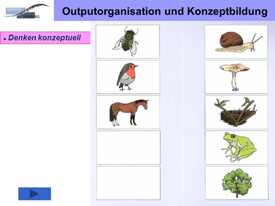 Beispiel SSA Offenburg
