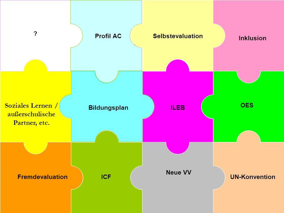 ? Soziales Lernen / außerschulische Partner, etc. Profil AC Fremdevaluation Selbstevaluation ICF ILEB Bildungsplan OES Neue VV Inklusion UN-Konvention