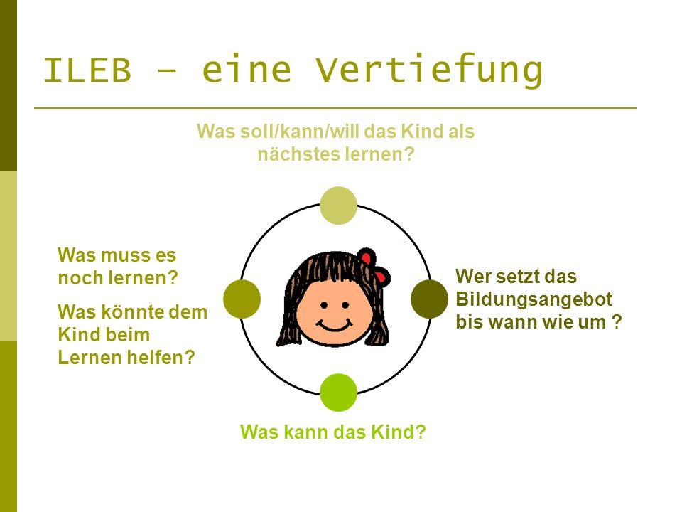 Was soll/kann/will das Kind als nächstes lernen? Was muss es noch lernen? Was könnte dem Kind beim Lernen helfen? Was kann das Kind? Wer setzt das Bil