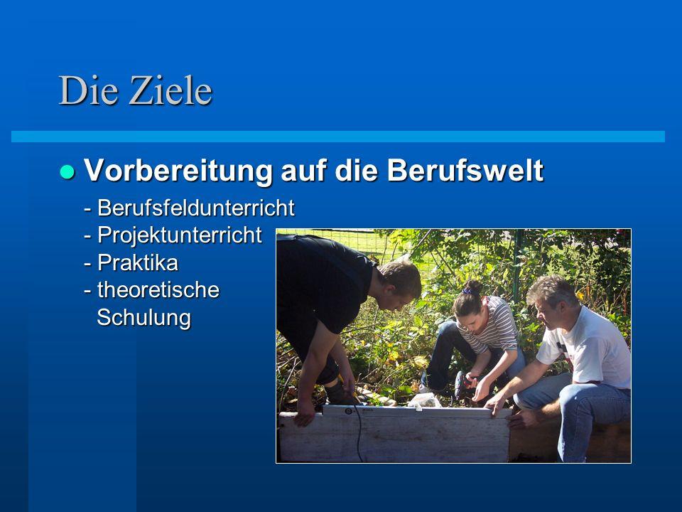 Die Ziele Vorbereitung auf die Berufswelt Vorbereitung auf die Berufswelt - Berufsfeldunterricht - Projektunterricht - Praktika - theoretische Schulun