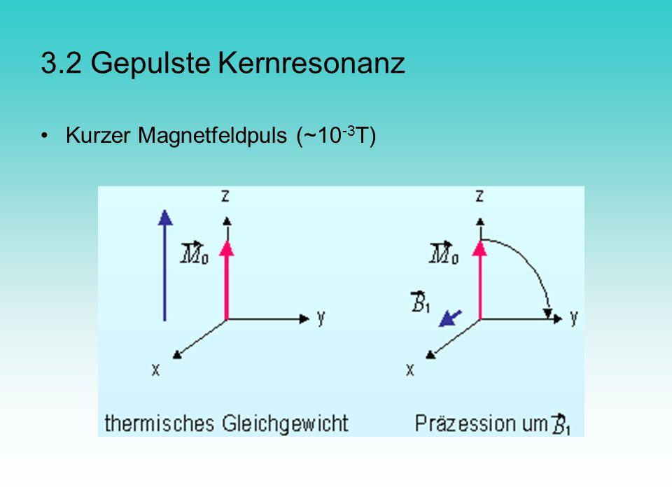 3.2 Gepulste Kernresonanz Kurzer Magnetfeldpuls (~10 -3 T)