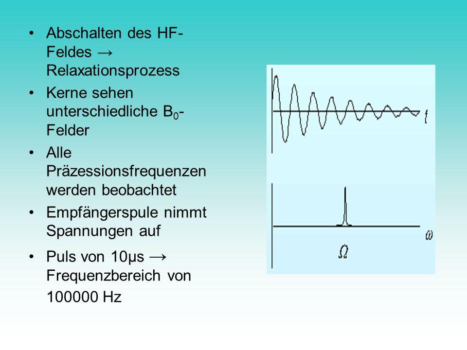 Abschalten des HF- Feldes Relaxationsprozess Kerne sehen unterschiedliche B 0 - Felder Alle Präzessionsfrequenzen werden beobachtet Empfängerspule nim