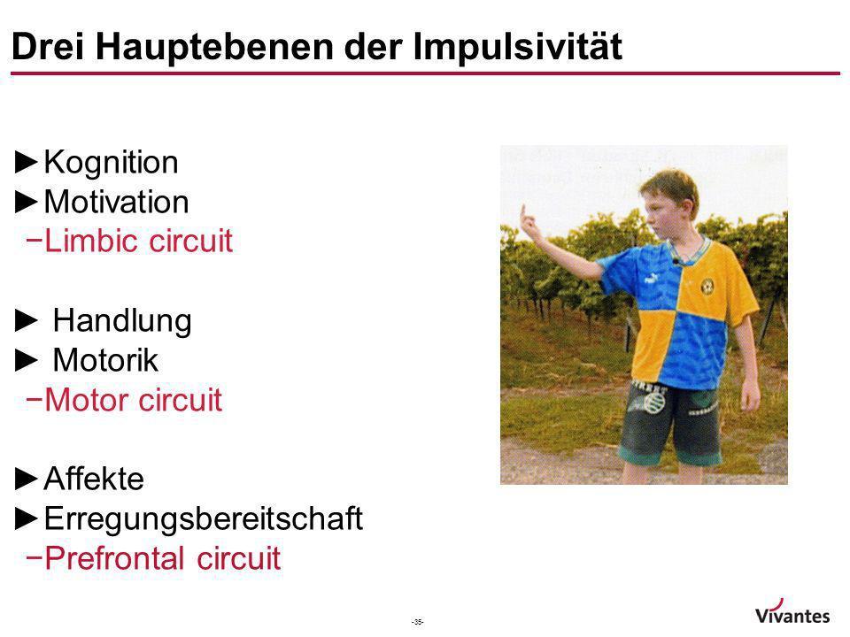 -35- Drei Hauptebenen der Impulsivität Kognition Motivation Limbic circuit Handlung Motorik Motor circuit Affekte Erregungsbereitschaft Prefrontal cir