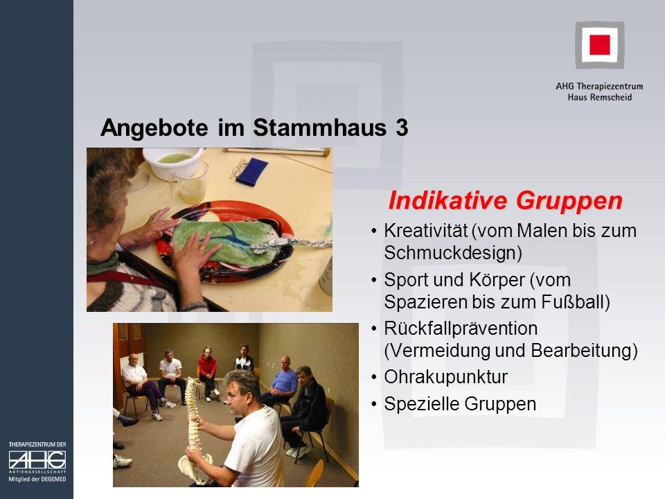 Angebote im Stammhaus 3 Indikative Gruppen Kreativität (vom Malen bis zum Schmuckdesign) Sport und Körper (vom Spazieren bis zum Fußball) Rückfallprävention (Vermeidung und Bearbeitung) Ohrakupunktur Spezielle Gruppen