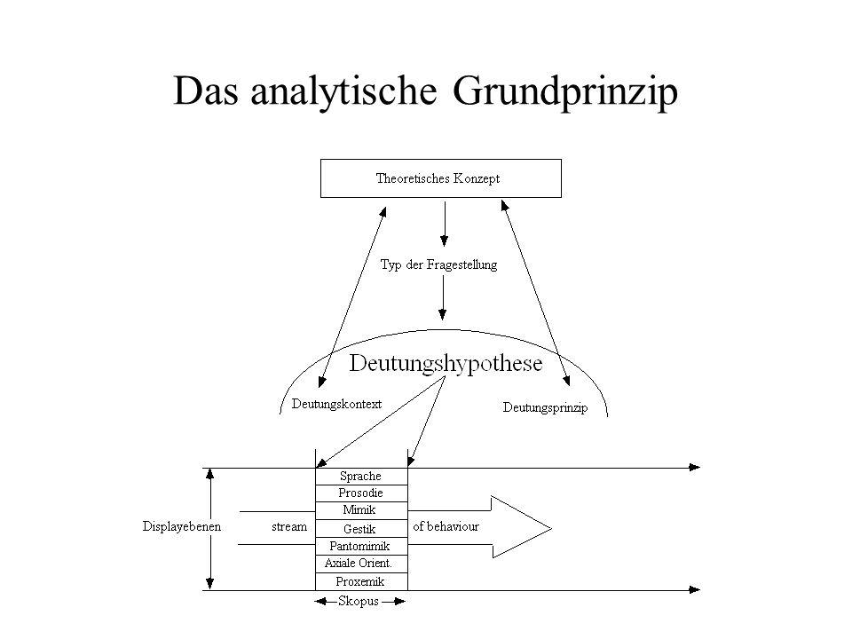 Das analytische Grundprinzip