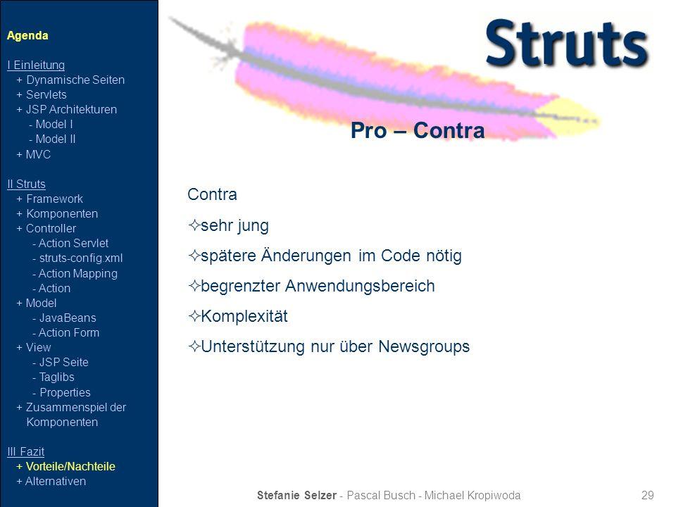 29 Pro – Contra Stefanie Selzer - Pascal Busch - Michael Kropiwoda Contra sehr jung spätere Änderungen im Code nötig begrenzter Anwendungsbereich Komp