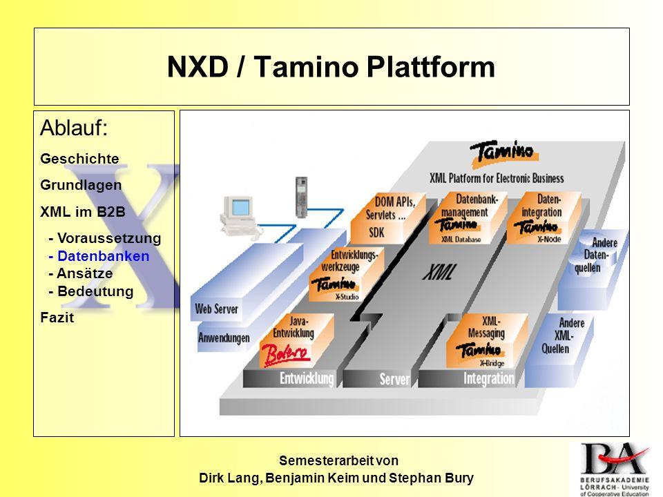 Semesterarbeit von Dirk Lang, Benjamin Keim und Stephan Bury NXD / Tamino Plattform Ablauf: Geschichte Grundlagen XML im B2B - Voraussetzung - Datenba