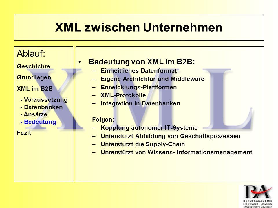 XML zwischen Unternehmen Bedeutung von XML im B2B: –Einheitliches Datenformat –Eigene Architektur und Middleware –Entwicklungs-Plattformen –XML-Protok