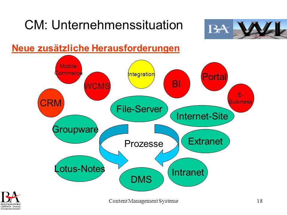 Content Management Systeme18 CM: Unternehmenssituation Intranet Extranet Internet-Site Groupware DMS File-Server Lotus-Notes Prozesse Neue zusätzliche