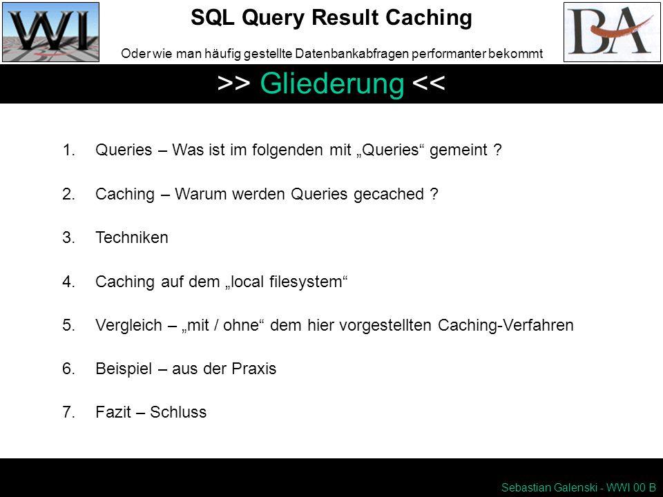 Sebastian Galenski - WWI 00 B SQL Query Result Caching Oder wie man häufig gestellte Datenbankabfragen performanter bekommt >> Gliederung << 1.Queries – Was ist im folgenden mit Queries gemeint .