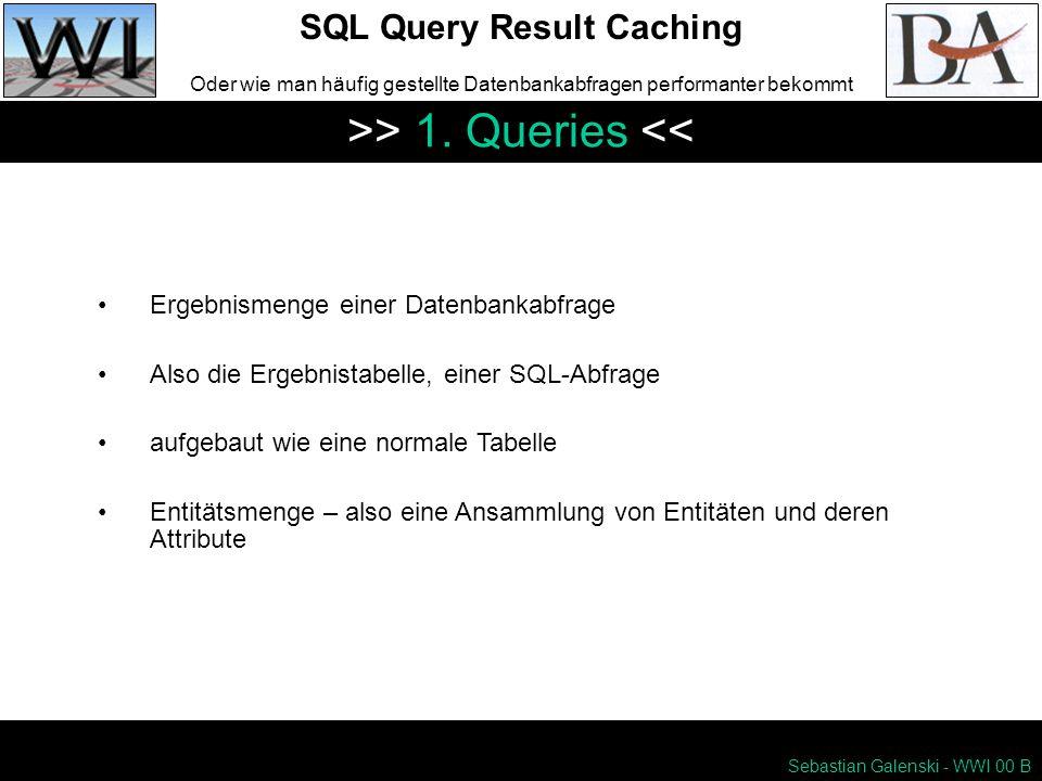 Sebastian Galenski - WWI 00 B SQL Query Result Caching Oder wie man häufig gestellte Datenbankabfragen performanter bekommt >> 1.