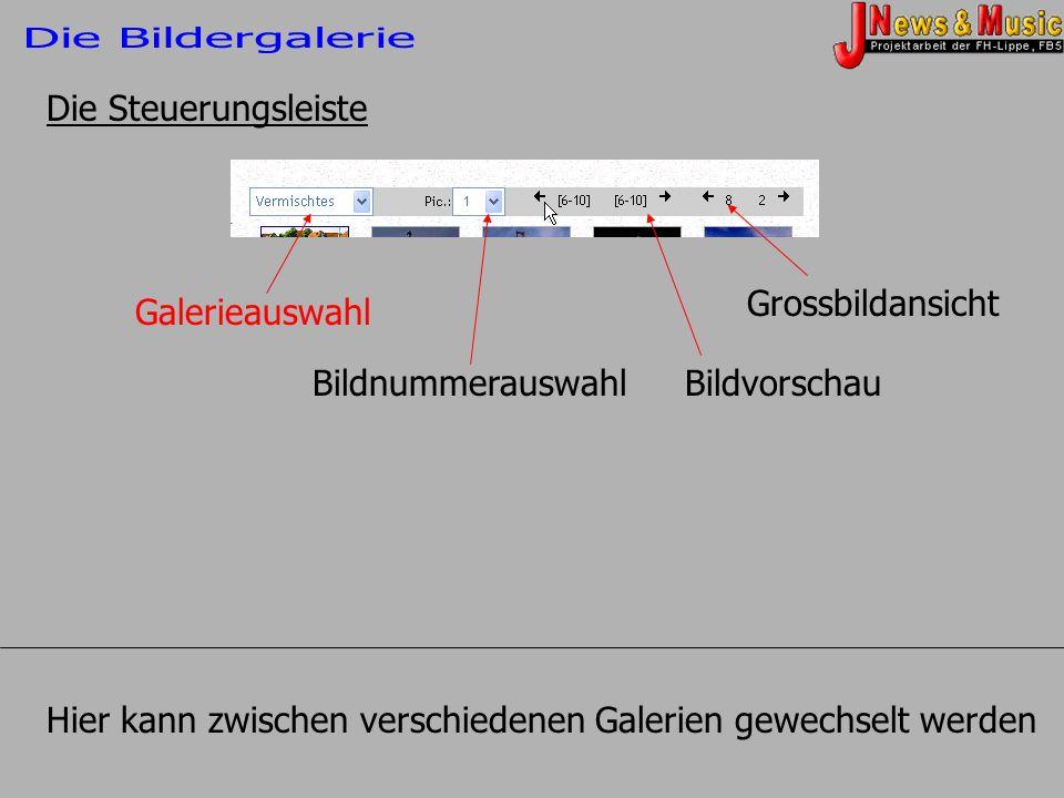 Die Steuerungsleiste Galerieauswahl BildnummerauswahlBildvorschau Grossbildansicht Hier kann zwischen verschiedenen Galerien gewechselt werden