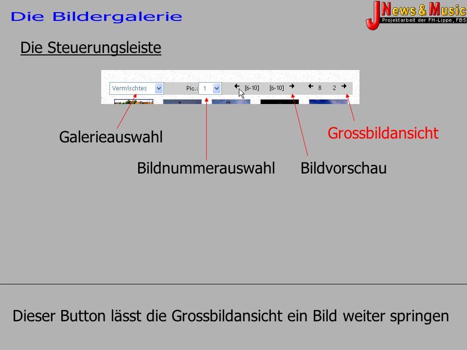 Die Steuerungsleiste Galerieauswahl BildnummerauswahlBildvorschau Grossbildansicht Dieser Button lässt die Grossbildansicht ein Bild weiter springen