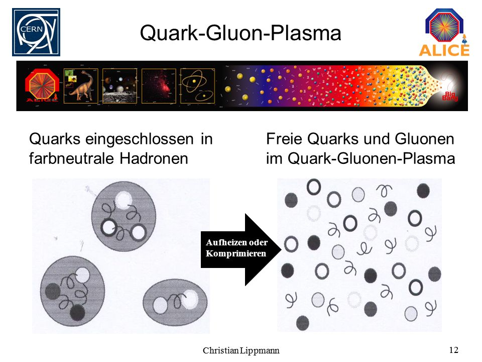 Christian Lippmann 12 Christian Lippmann 12 Quark-Gluon-Plasma Quarks eingeschlossen in farbneutrale Hadronen Freie Quarks und Gluonen im Quark-Gluone