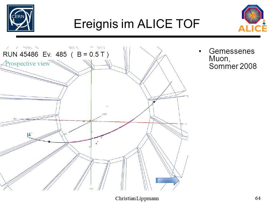 Christian Lippmann 64 Christian Lippmann 64 Ereignis im ALICE TOF Gemessenes Muon, Sommer 2008 RUN 45486 Ev. 485 ( B = 0.5 T )