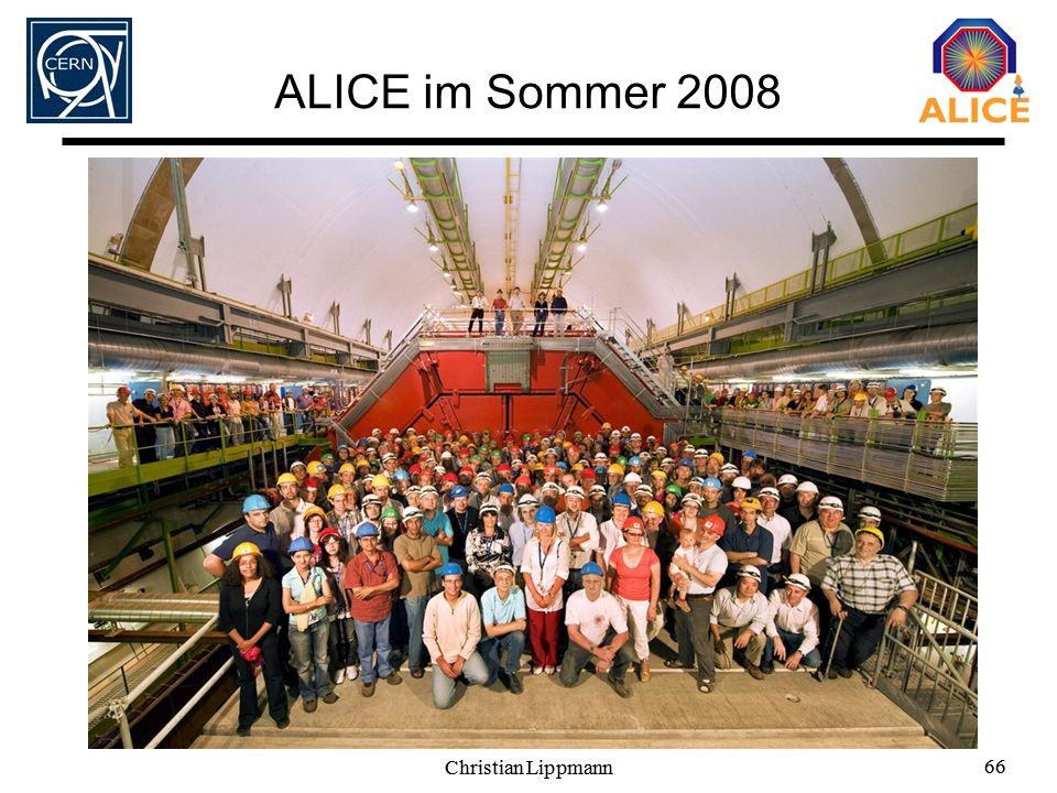 Christian Lippmann 66 Christian Lippmann 66 ALICE im Sommer 2008