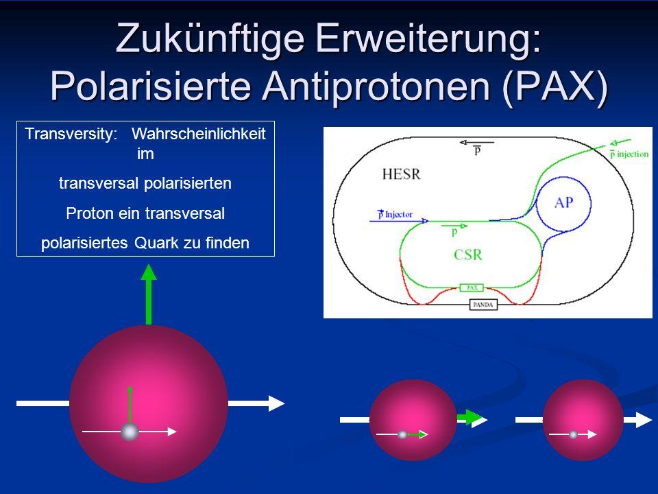 FAIR: Forschung Struktur des Nukleons, Herkunft der Masse, Quark-Gluon-Wechselwirkung Struktur des Nukleons, Herkunft der Masse, Quark-Gluon-Wechselwirkung Struktur der Atomkerne, Halo-Kerne Struktur der Atomkerne, Halo-Kerne Strange Quarks in Kernen, Charmed Quarks Strange Quarks in Kernen, Charmed Quarks Herkunft der Elemente, Weisse Zwerge, Super- Novae, Neutronensterne, Sternentwicklung Herkunft der Elemente, Weisse Zwerge, Super- Novae, Neutronensterne, Sternentwicklung Dichte und heiße Kernmaterie, Quark-Gluon- Plasma, frühe Phasen des Universums Dichte und heiße Kernmaterie, Quark-Gluon- Plasma, frühe Phasen des Universums Relativistische Quanten Chromodynamik unter allen Bedingungen, nicht-perturbativ Relativistische Quanten Chromodynamik unter allen Bedingungen, nicht-perturbativ