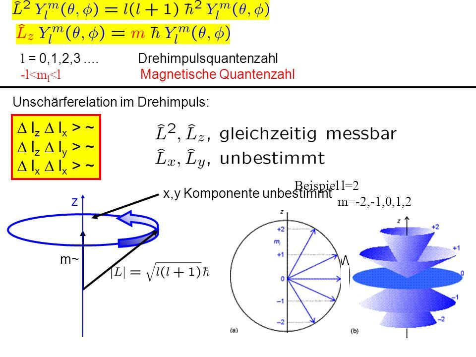 l = 0,1,2,3.... Drehimpulsquantenzahl -l<m l <l Magnetische Quantenzahl l z l x > ~ l z l y > ~ l x l x > ~ Unschärferelation im Drehimpuls:2 dimensio
