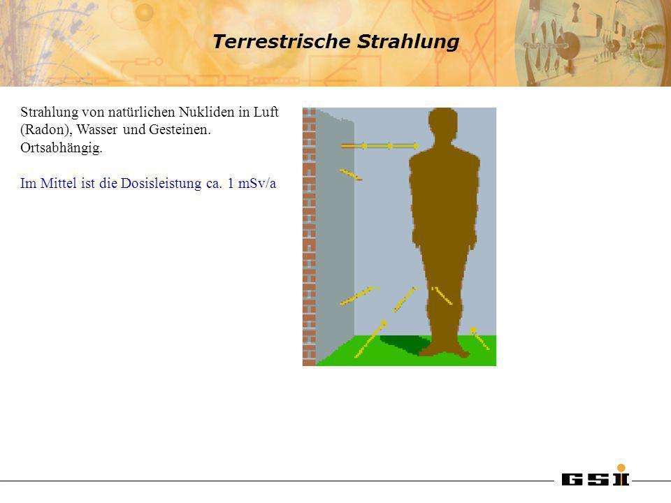 Terrestrische Strahlung Strahlung von natürlichen Nukliden in Luft (Radon), Wasser und Gesteinen. Ortsabhängig. Im Mittel ist die Dosisleistung ca. 1