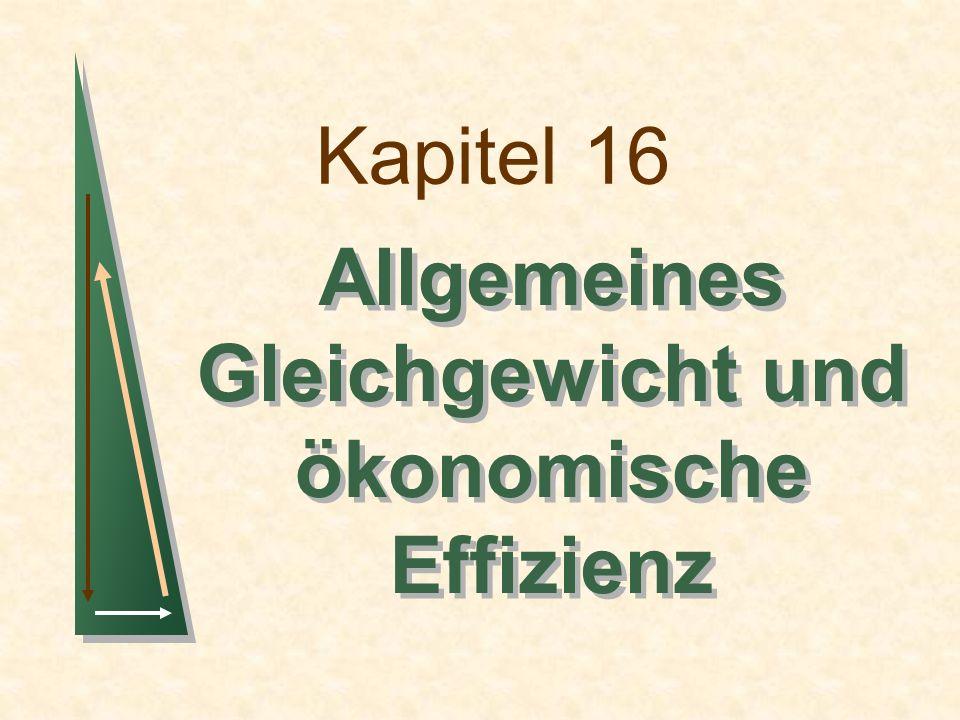 Kapitel 16Folie 2 Themen in diesem Kapitel Die allgemeine Gleichgewichtsanalyse Effizienz beim Tausch Gerechtigkeit und Effizienz Effizienz bei der Produktion
