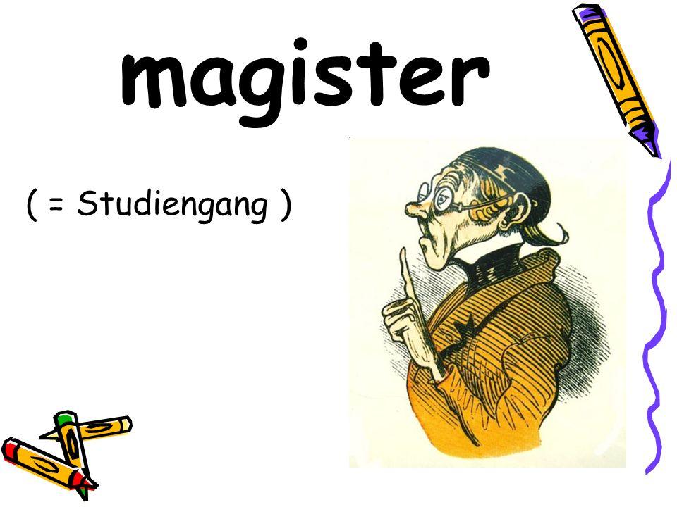 magister ( = Studiengang )