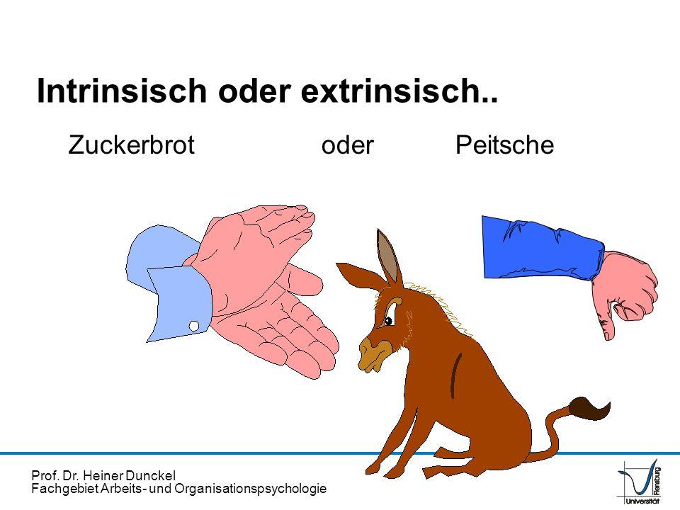 Prof. Dr. Heiner Dunckel Fachgebiet Arbeits- und Organisationspsychologie Intrinsisch oder extrinsisch.. Zuckerbrot oder Peitsche