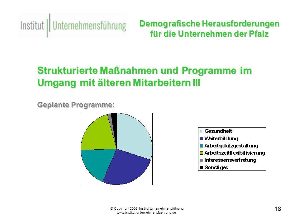 18 Demografische Herausforderungen für die Unternehmen der Pfalz © Copyright 2006, Institut Unternehmensführung www.institut-unternehmensfuehrung.de Strukturierte Maßnahmen und Programme im Umgang mit älteren Mitarbeitern III Geplante Programme:
