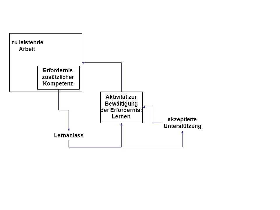 konventionelle Unterstützungs- services akzeptierte Unterstützung Barrieren unkonventionelle Unterstützungs- services zu leistende Arbeit Erfordernis zusätzlicher Kompetenz Lernanlass Aktivität zur Bewältigung der Erfordernis: Lernen