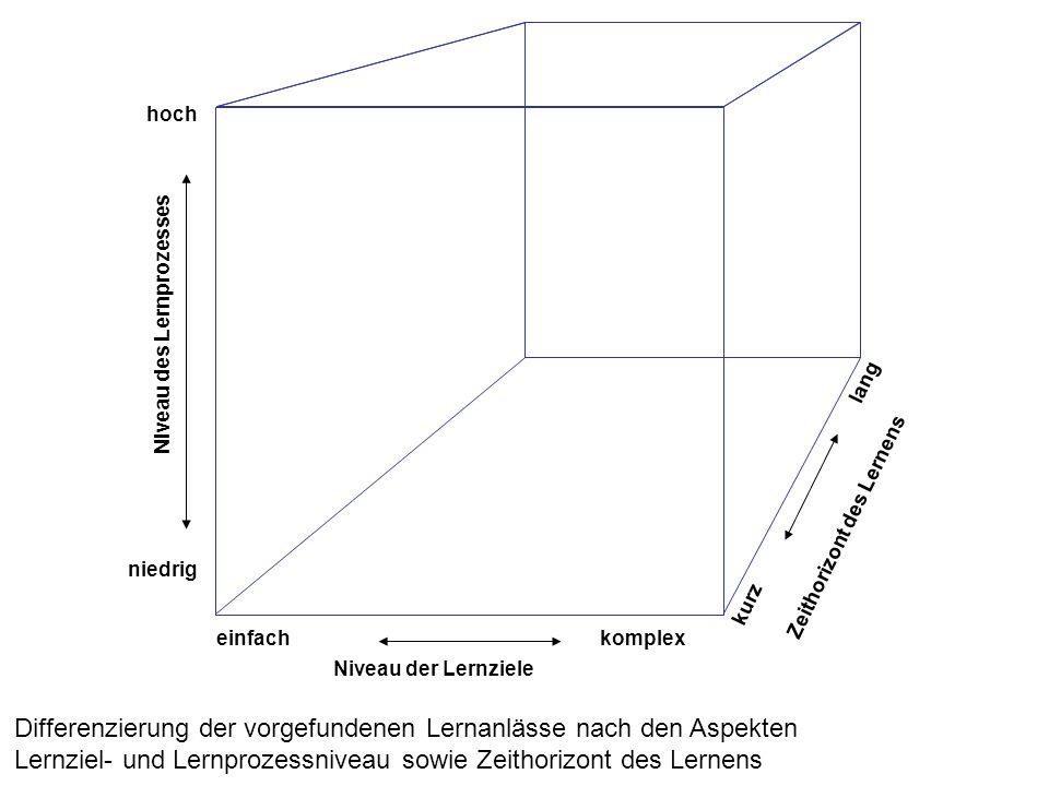 hoch niedrig einfachkomplex lang kurz Niveau der Lernziele Niveau des Lernprozesses Zeithorizont des Lernens Differenzierung der vorgefundenen Lernanlässe nach den Aspekten Lernziel- und Lernprozessniveau sowie Zeithorizont des Lernens