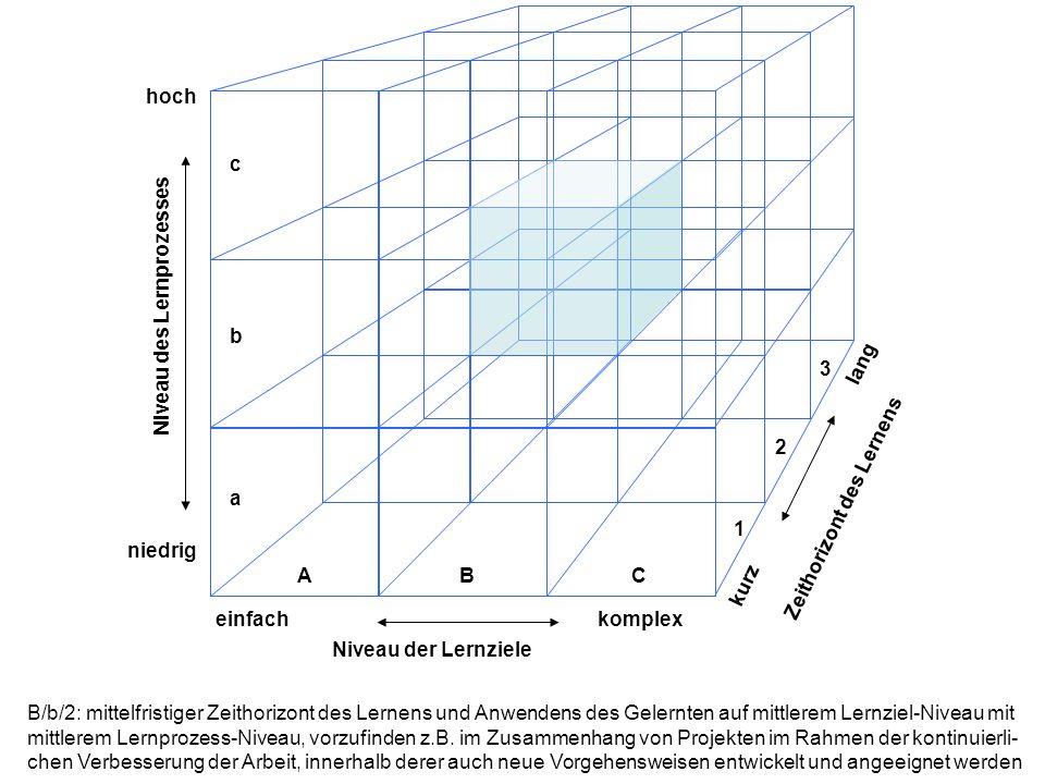 hoch niedrig einfachkomplex lang kurz Niveau der Lernziele Niveau des Lernprozesses Zeithorizont des Lernens ABC a b c 1 2 3 C/c/3: langfristiger Zeithorizont des Lernens und Anwendens des Gelernten auf komplexem Lernziel-Niveau mit hohem Lernprozess-Niveau, zu erkennen in dem Fall, dass ein biographisch ausgerichtetes Lerninteresse mit vielfältigem Inhalt stattfindet, bei dem unterschiedliche Komponenten für den Lern- und Entwicklungs- prozess eingesetzt werden, gegebenenfalls in Zusammenhang mit der betrieblichen Personalentwicklung.