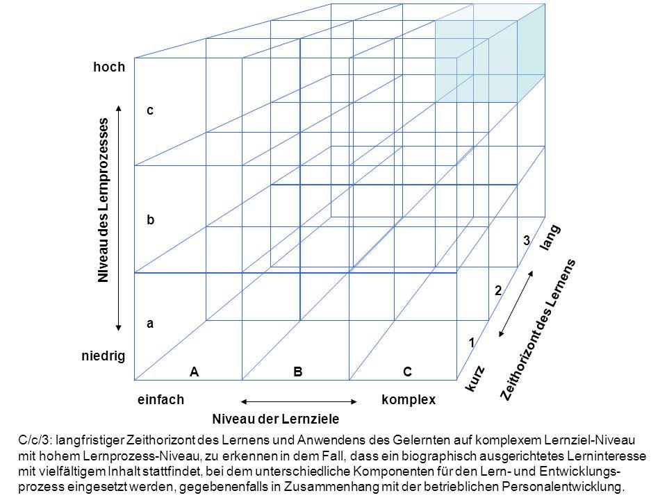 hoch niedrig einfachkomplex lang kurz Niveau der Lernziele Niveau des Lernprozesses Zeithorizont des Lernens ABC a b c 1 2 3 C/c/3: langfristiger Zeit