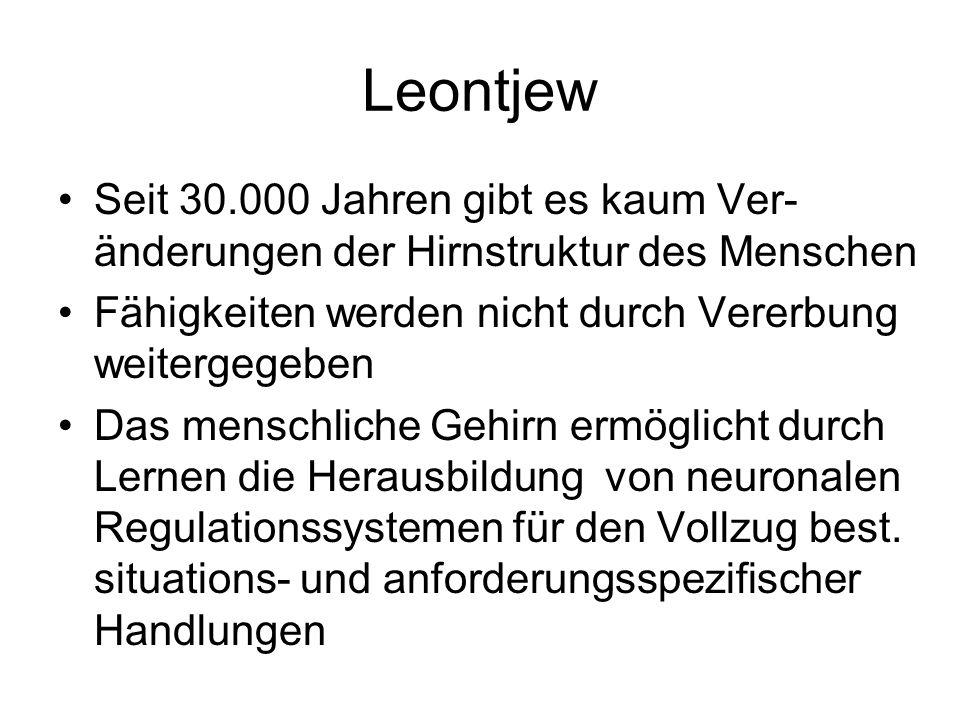 Leontjew Seit 30.000 Jahren gibt es kaum Ver- änderungen der Hirnstruktur des Menschen Fähigkeiten werden nicht durch Vererbung weitergegeben Das mens