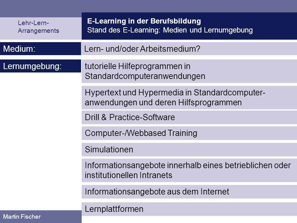 E-Learning in der Berufsbildung Stand des E-Learning: Medien und Lernumgebung Lehr-Lern- Arrangements Martin Fischer Lern- und/oder Arbeitsmedium?Medi