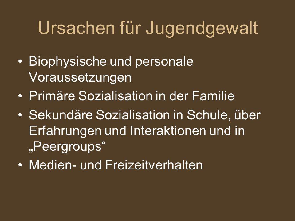 Ursachen für Jugendgewalt Biophysische und personale Voraussetzungen Primäre Sozialisation in der Familie Sekundäre Sozialisation in Schule, über Erfa