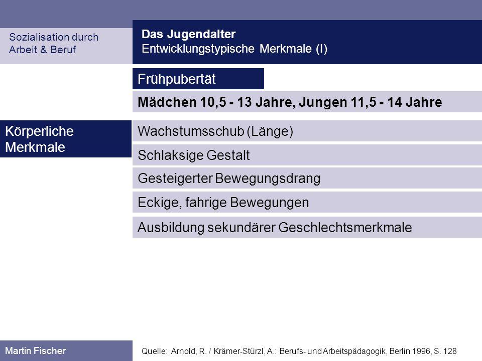 Das Jugendalter Entwicklungstypische Merkmale (II) Sozialisation durch Arbeit & Beruf Martin Fischer Quelle: Arnold, R.