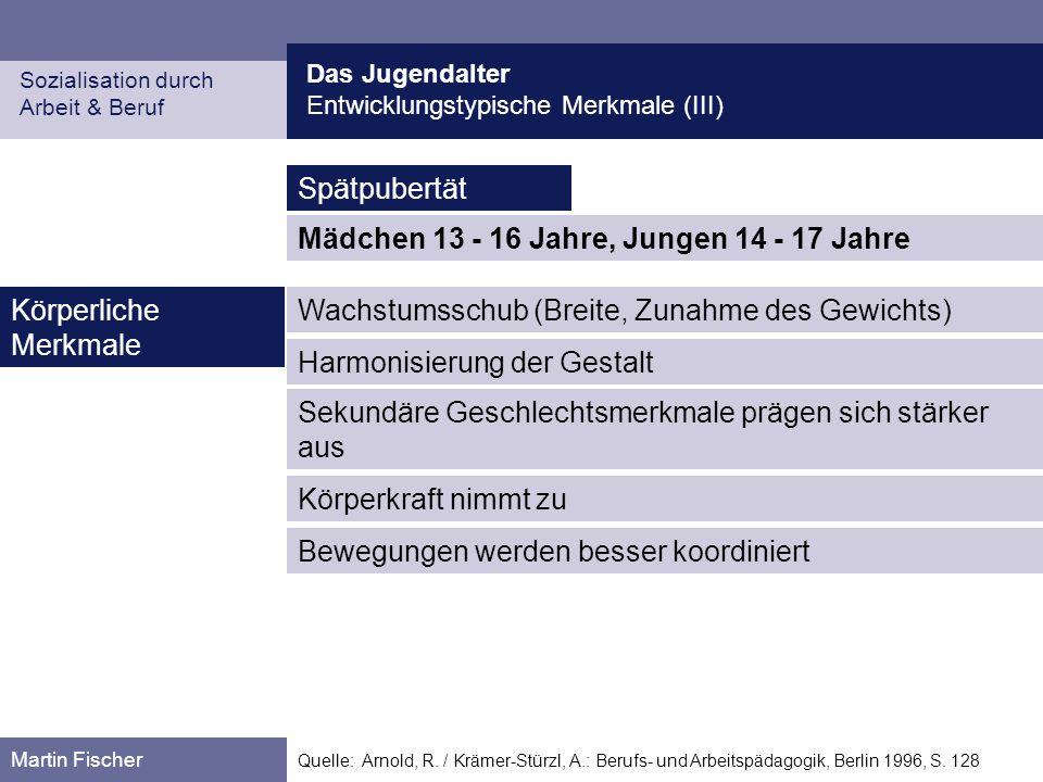 Das Jugendalter Entwicklungstypische Merkmale (III) Sozialisation durch Arbeit & Beruf Martin Fischer Quelle: Arnold, R. / Krämer-Stürzl, A.: Berufs-