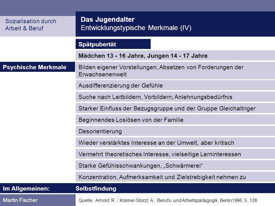 Das Jugendalter Entwicklungstypische Merkmale (IV) Sozialisation durch Arbeit & Beruf Martin Fischer Quelle: Arnold, R. / Krämer-Stürzl, A.: Berufs- u