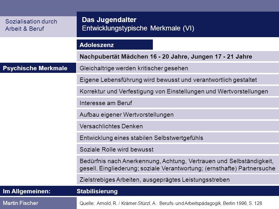 Das Jugendalter Entwicklungstypische Merkmale (VI) Sozialisation durch Arbeit & Beruf Martin Fischer Quelle: Arnold, R. / Krämer-Stürzl, A.: Berufs- u