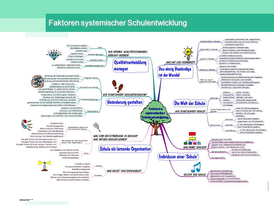 Faktoren systemischer Schulentwicklung