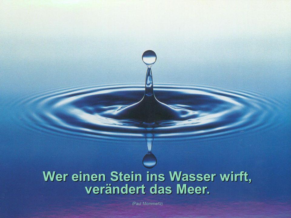 Wer einen Stein ins Wasser wirft, verändert das Meer. (Paul Mommertz)
