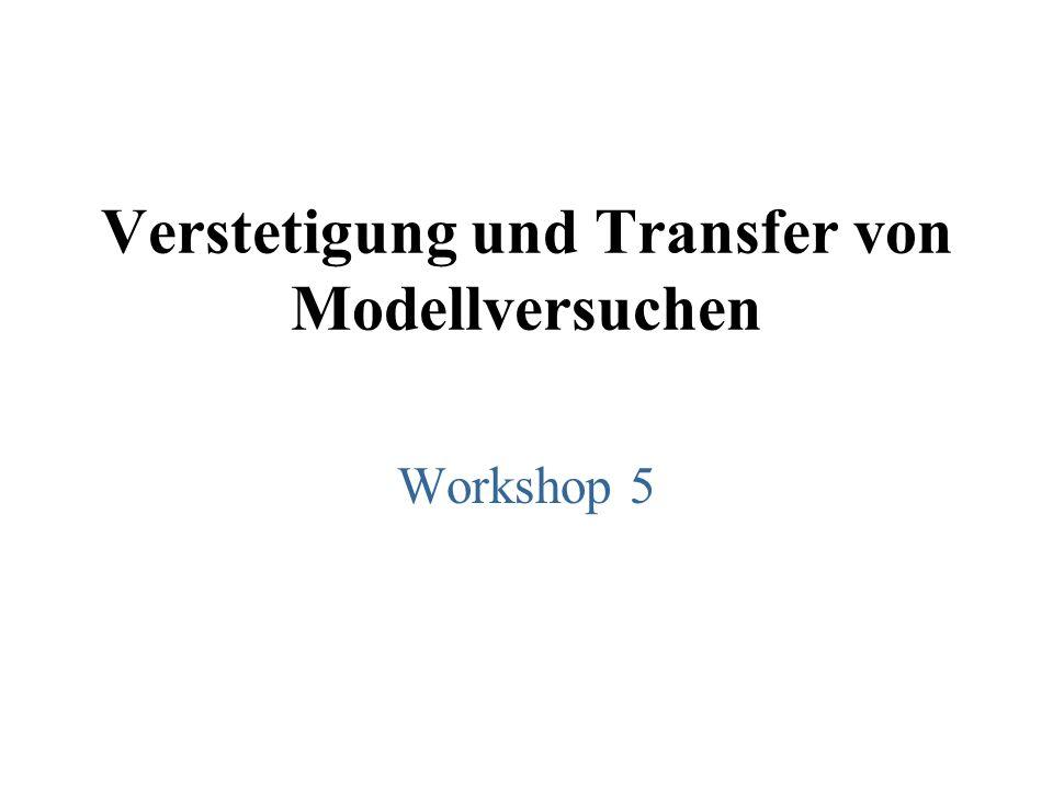 Verstetigung und Transfer von Modellversuchen Workshop 5