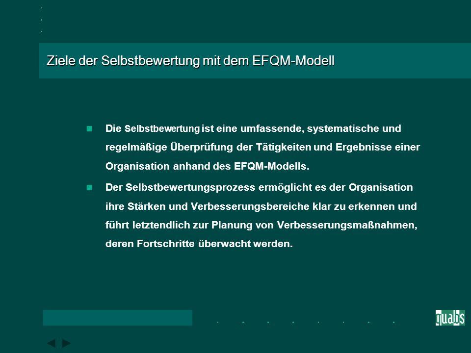 Ablauf der Selbstbewertung mit dem EFQM-Modell