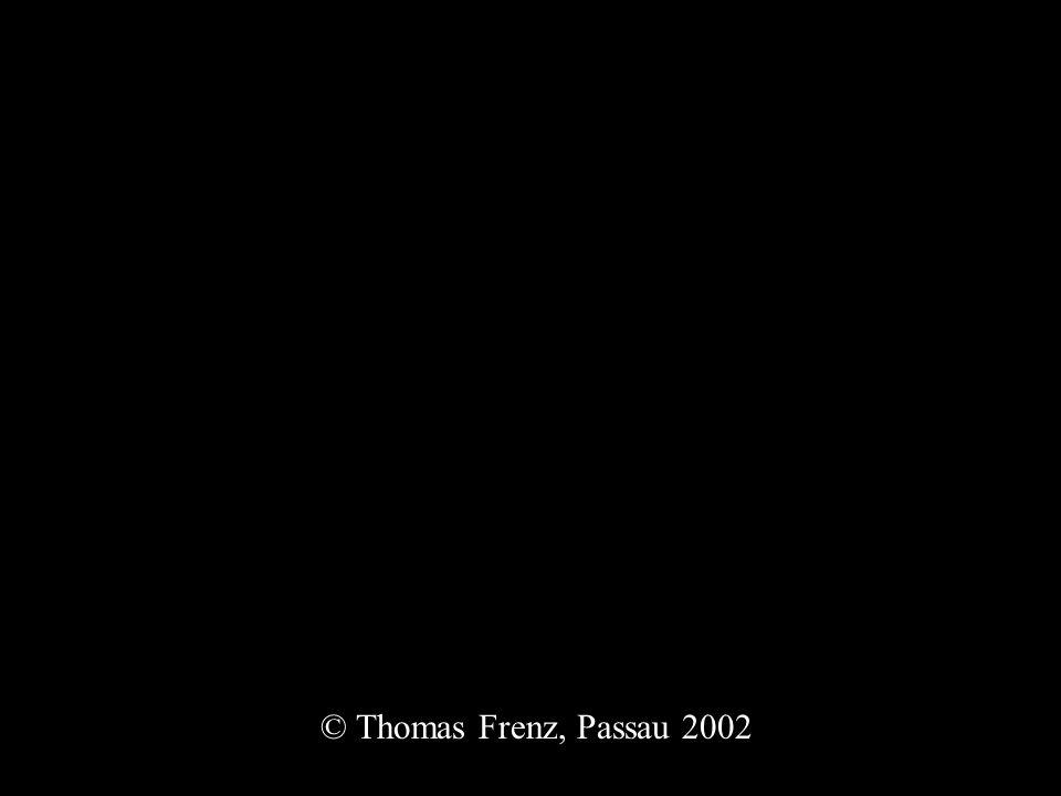 © Thomas Frenz, Passau 2002