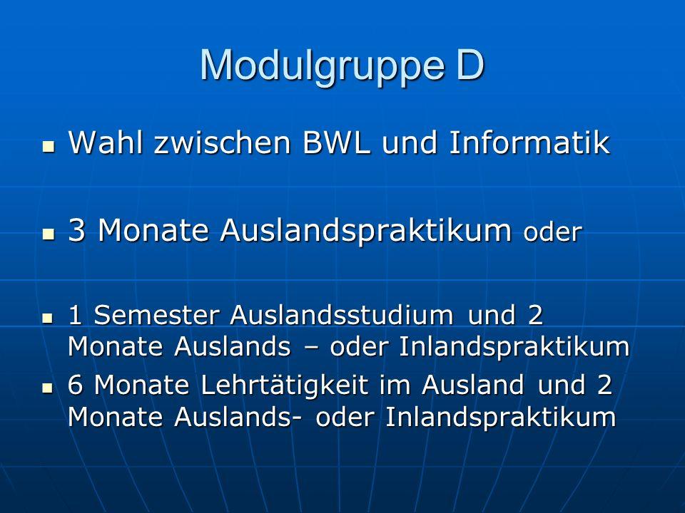 Modulgruppe D Wahl zwischen BWL und Informatik Wahl zwischen BWL und Informatik 3 Monate Auslandspraktikum oder 3 Monate Auslandspraktikum oder 1 Seme
