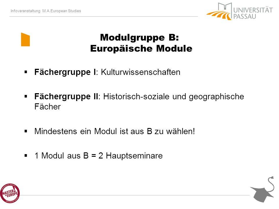 Infoveranstaltung M.A.European Studies Modulgruppe B: Europäische Module Fächergruppe I: Kulturwissenschaften Fächergruppe II: Historisch-soziale und geographische Fächer Mindestens ein Modul ist aus B zu wählen.