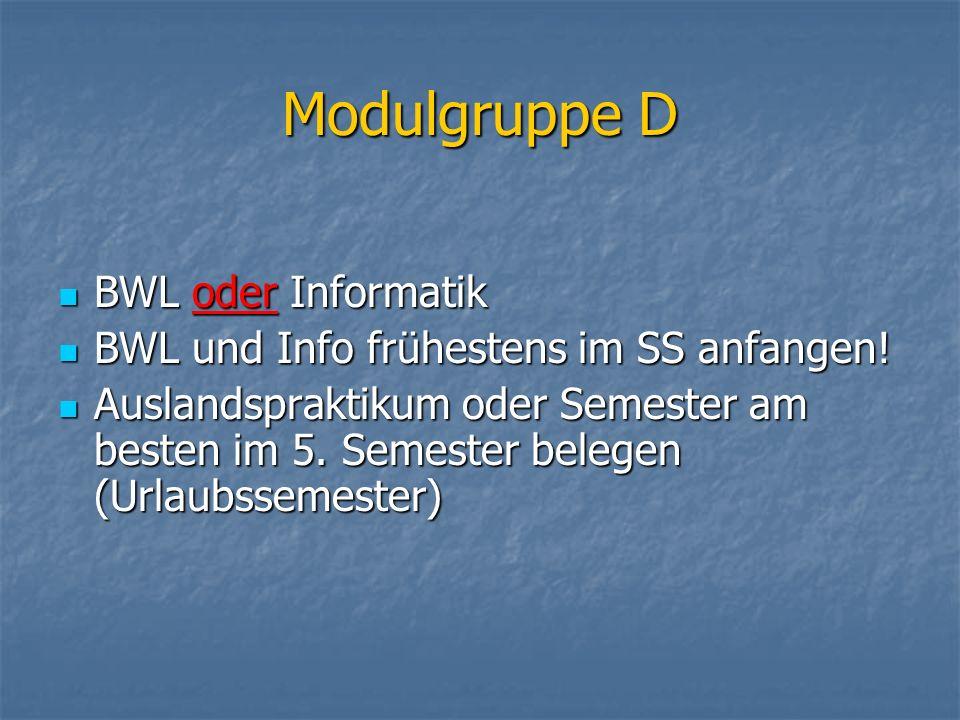 Modulgruppe D BWL oder Informatik BWL oder Informatik BWL und Info frühestens im SS anfangen! BWL und Info frühestens im SS anfangen! Auslandspraktiku
