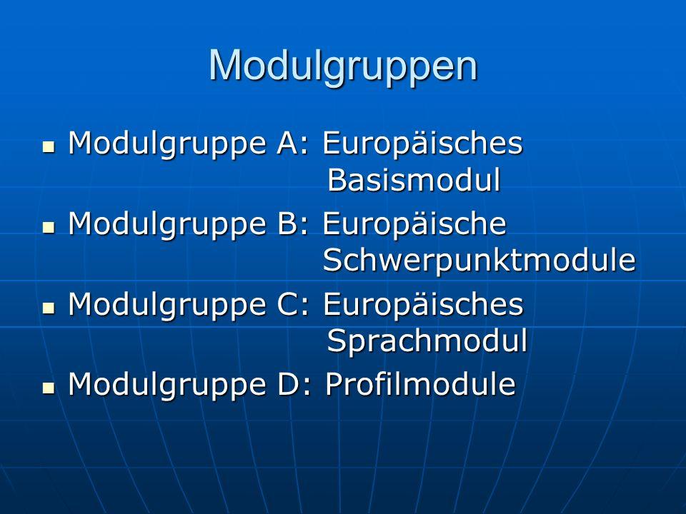 Modulgruppen Modulgruppe A: Europäisches Basismodul Modulgruppe A: Europäisches Basismodul Modulgruppe B: Europäische Schwerpunktmodule Modulgruppe B: