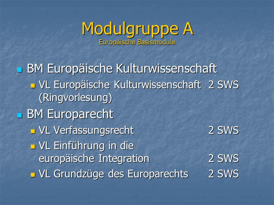 Modulgruppe A Europäische Basismodule BM Europäische Kulturwissenschaft BM Europäische Kulturwissenschaft VL Europäische Kulturwissenschaft2 SWS (Ring
