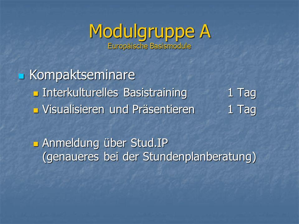 Modulgruppe A Europäische Basismodule Kompaktseminare Kompaktseminare Interkulturelles Basistraining 1 Tag Interkulturelles Basistraining 1 Tag Visual