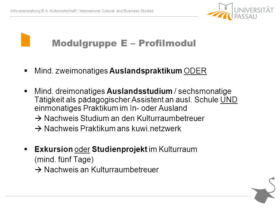Infoveranstaltung B.A. Kulturwirtschaft / International Cultural and Business Studies Modulgruppe E – Profilmodul Mind. zweimonatiges Auslandspraktiku